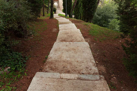 arboretum: Long ancient stone staircase descends along the trees Stock Photo