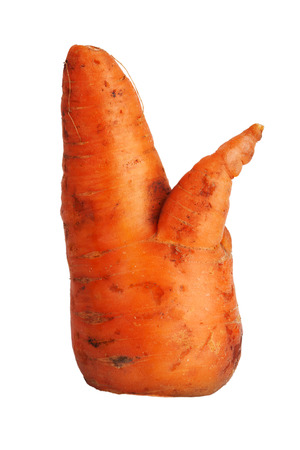 uncouth: Large crooked carrot on a white background
