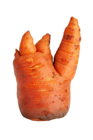 uncouth: Thick clumsy carrot on a white background