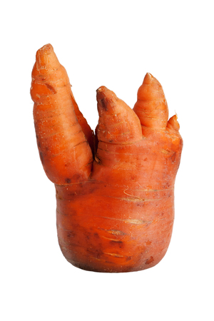 uncouth: Clumsy ripe carrot on a white background Stock Photo