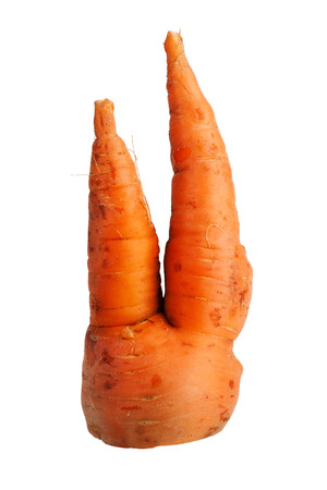 uncouth: Bifurcated crooked carrot on a white background