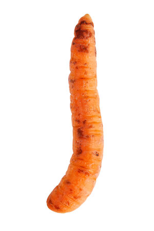 uncouth: Fine ripe curve carrots on white background