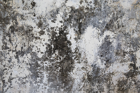 plastered: Old cracked plastered surface white and gray
