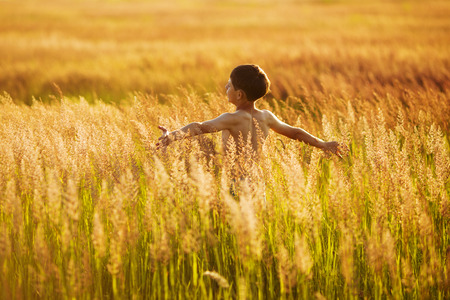 Happy boy running in the tall grass on a summer evening Stock Photo