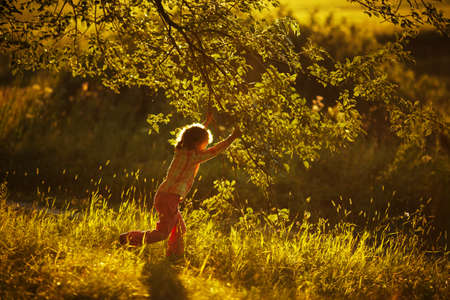 blessedness: Little girl playing with foliage in summer
