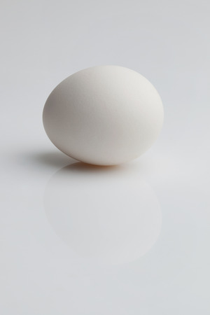 mirrored: White egg lays on a mirrored background Stock Photo