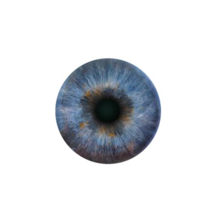 blue eye: Blue pupil of the human eye on a white background