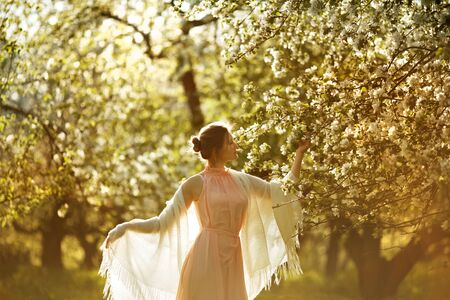 beatitude: Woman in a pink dress near blooming apple tree Stock Photo