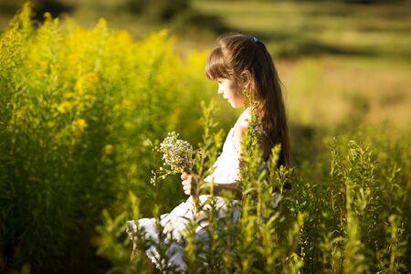 girlie: Little girl picking flowers in a field