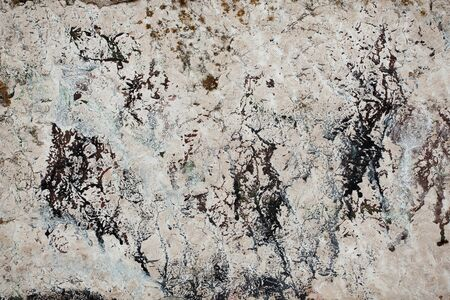 firmness: Stone surface of light gray with dark divorces