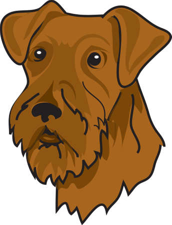 airedale terrier: Illustration of a brown airedale terrier