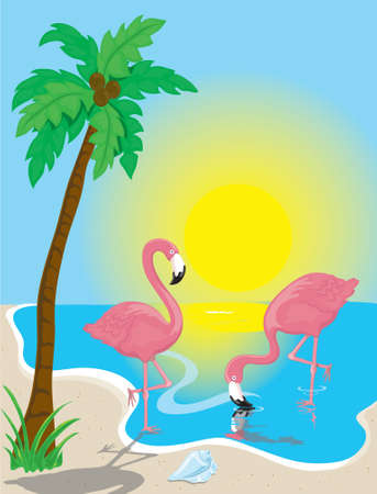 Illustration of two pink flamingos on the beach Stock Photo