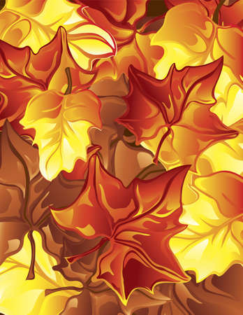 Illustration of fall leaves as a backgound