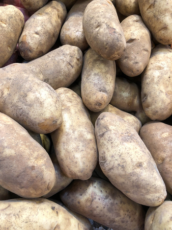 Closeup photo of a bunch of Idaho Russet potatoes 写真素材 - 109318616