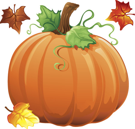 Illustration of fall leaves and a pumpkin Illustration