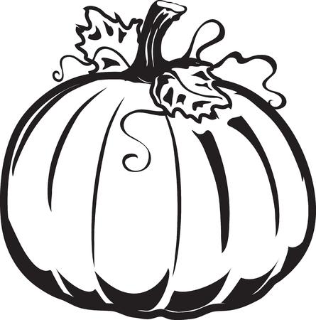 Vector illustration of a pumpkin icon or symbol