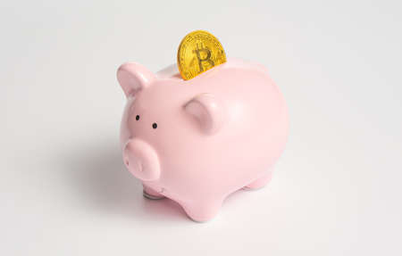 A classic pink piggy bank with a cryptocurrency symbol - a bitcoin gold coin