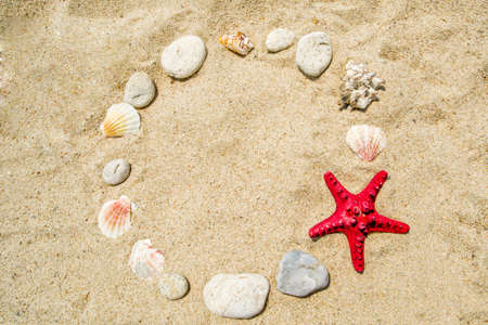red starfish with Shells Frame on sand photo