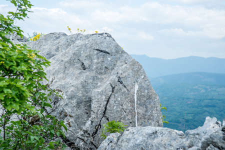 Great rock at the top of the hill with yellow flowers and branches Stock Photo
