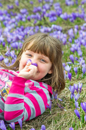 Adorable smiling girl holding flower on her nose and lying on the meadow
