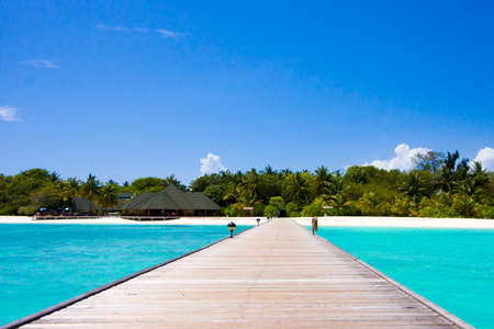 Maldives beach scene photo