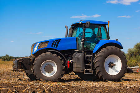 previously: Big blue tractor plows the field and removes the remains of previously mown sunflower. Work agricultural, cleaning machines. Stock Photo