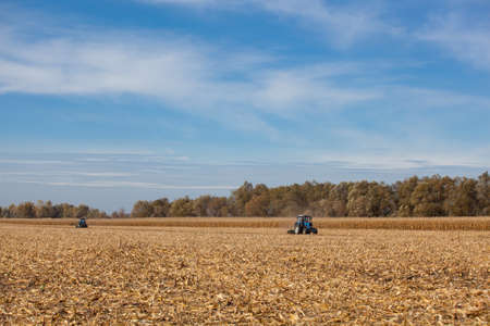 The sloping field. Two big blue tractor plowing the ground after harvesting corn crop on a sunny, clear, autumn day.