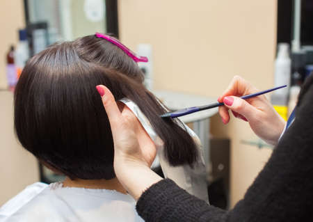 amoniaco: The hairdresser paints the womans hair in a dark color, apply the paint to her hair in the beauty salon.