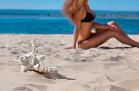 바다로 해변에 앉아 검은 수영복에 젊은 매력적인 여자. 앞면에는 모래 위에 큰 흰색 껍질이 있습니다.