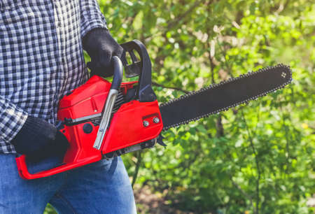 A man - Lumberjack in a black and white checkered shirt sawing a chainsaw in a forest. Stock Photo