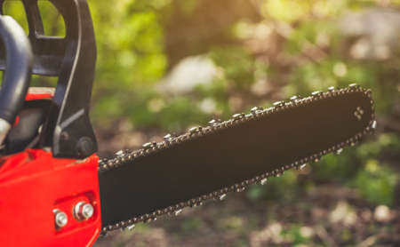 The woodcutter is holding a chainsaw in the forest.close-up.