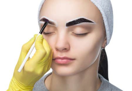 The make-up artist applies a paints eyebrow dye on the eyebrows of a young girl. Professional face care. Standard-Bild
