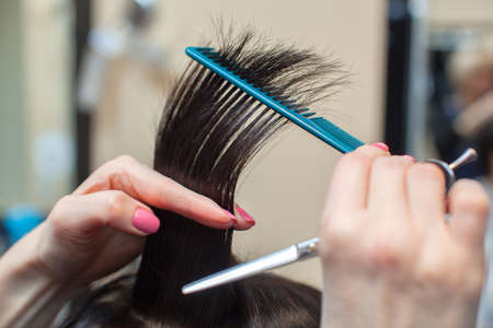 The hairdresser does a haircut of hair to a young girl, a brunette in a beauty salon.