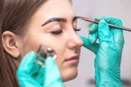 la maquilladora aplica pintura de henna en las cejas en un salón de belleza. Cuidado profesional para la cara. Foto de archivo