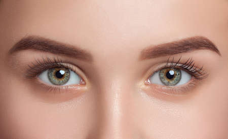 Beautiful woman with long eyelashes, beautiful make-up and thick eyebrows. Beautiful blue eyes close up. Looking at the camera. Professional makeup and cosmetology skin care. Standard-Bild