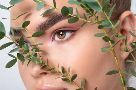 Eyes and eyebrows close up. Portrait of a beautiful teenage girl with beautiful makeup and healthy clean skin. Near the face is a branch of eucalyptus. Makeup and cosmetology concept.