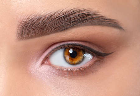 Eyes and eyebrows close up. Portrait of a beautiful teenage girl with beautiful makeup and healthy clean skin. Makeup and cosmetology concept.
