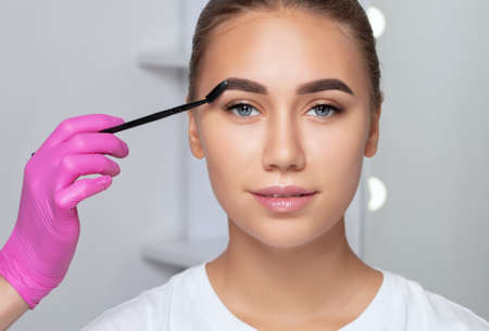 Makeup artist combs eyebrows with a brush after dyeing in a beauty salon.Professional makeup and cosmetology skin care. 스톡 콘텐츠