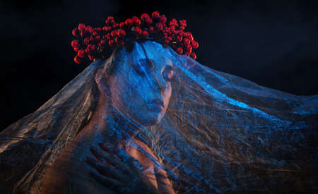 A girl with beautiful makeup, her face is covered with blue tulle, a wreath of berries on her head. Halloween concept.