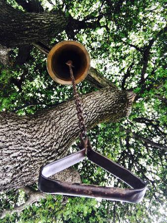 ベルの木の