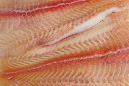 greenfish: Pangasius fillets of raw fish -macro shot