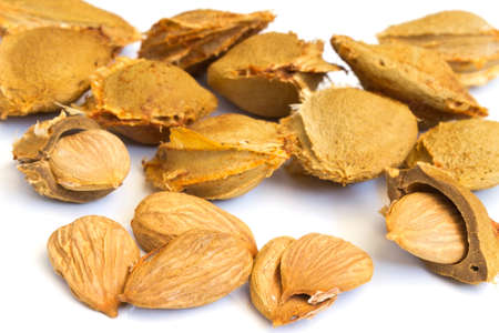 kernel: Seeds and apricot kernel on a white background