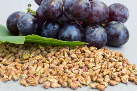 grapes on vine:  Grapes and grape seeds on the table