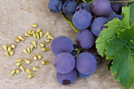 grape seed: Grapes and grape seed on a wooden table Stock Photo