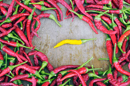 sex discrimination: One yellow peppers in the crowd red. Difference concept Stock Photo