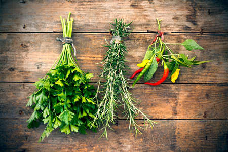 tied down: Bunch of herbs hanging for drying Stock Photo