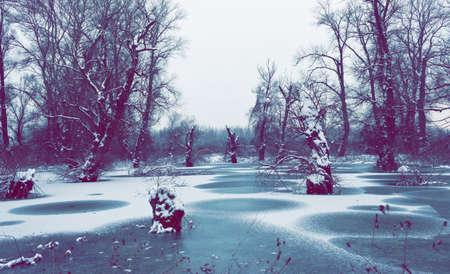 frostily: River floodplains,winter environment