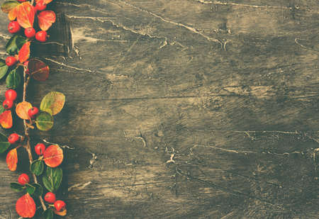 Holiday branches and berries over rustic wood background