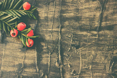 Holiday  evergreen branches and berries on a rustic wooden background