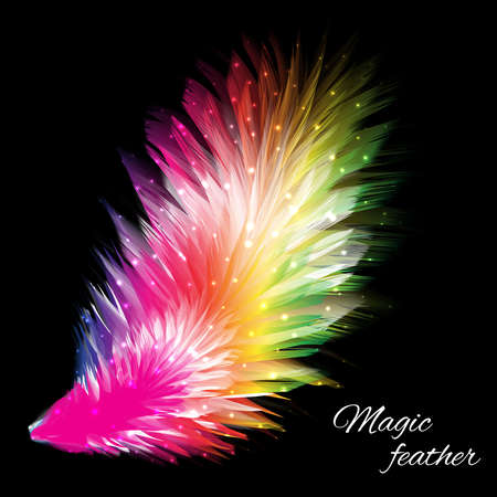 rainbow colors: Beautiful magic feather on black background. Design element, illustration